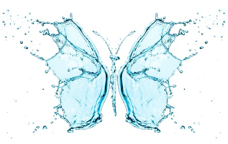 welling: Butterfly splashing water isolated on a white background Stock Photo