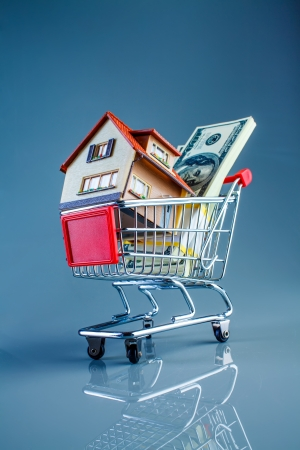 selling house: shopping cart and house on a blue background