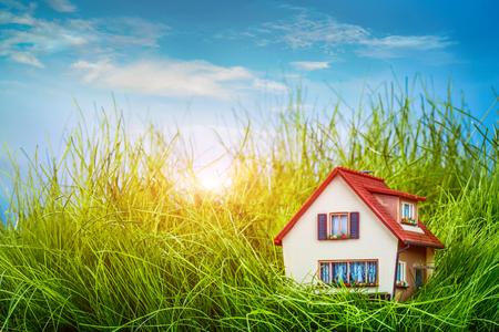緑の芝生の上の小さな家 写真素材