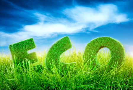 Letters on the green grass on blue sky background. Eco concept. photo