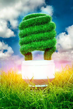 Eco light bulb in green grass on blue sky background photo