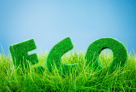Letters on the green grass on blue background. Eco concept. photo