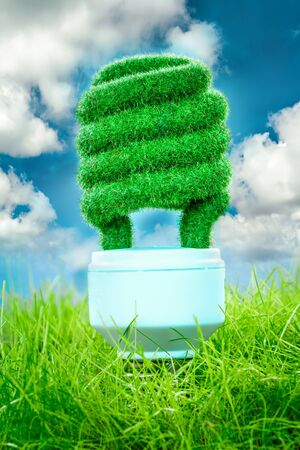 social responsibility: Eco light bulb in green grass on blue sky background