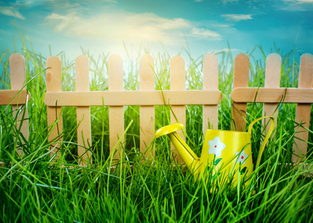 Watering can, Garden grass and wooden fence on blue sky background photo