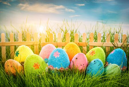 Decorated easter eggs in the grass on blue sky background photo