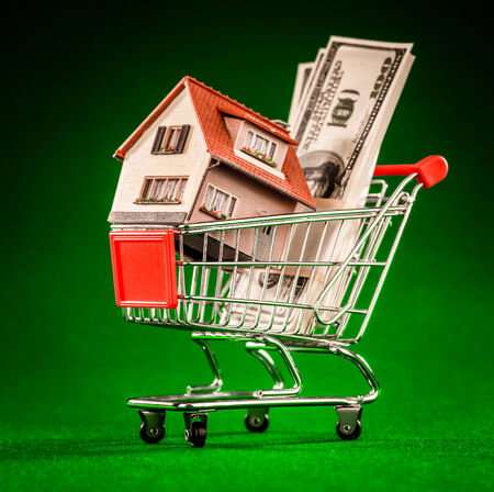 shopping cart and house on a green background photo