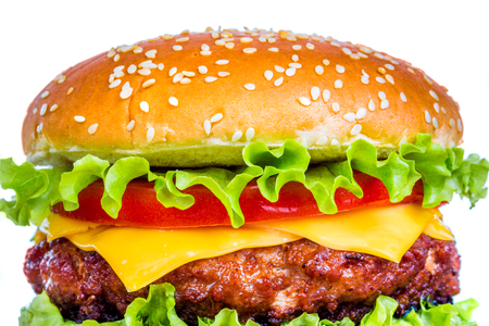 american cuisine: Tasty and appetizing hamburger cheeseburger Stock Photo