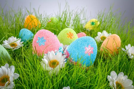 celebratory event: Decorated easter eggs in the grass