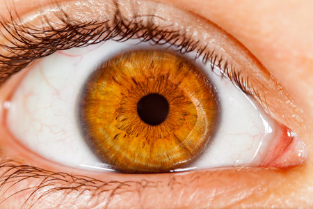 Photo Human eye close-up. Foto de archivo