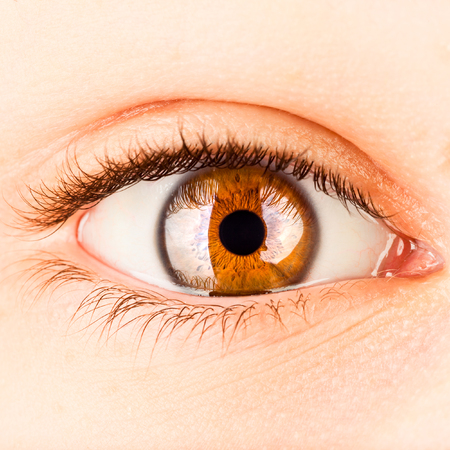 ojo humano: Ojo Photo humano de cerca.