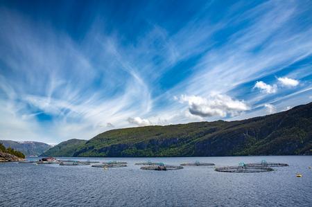 La pêche au saumon de Ferme en Norvège Banque d'images - 45710494