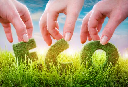 environmental science: Letters on the green grass on blue background. Eco concept.