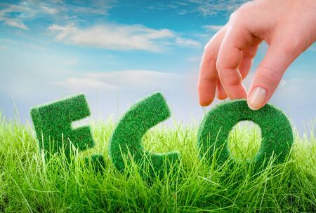 green eco: Letters on the green grass on blue background. Eco concept.
