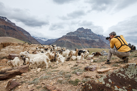 pradesh: Animal Nature photographer in Himalayas mountains. Spiti valley, Himachal Pradesh, India Stock Photo