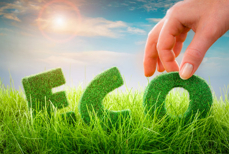 blue green background: Letters on the green grass on blue background. Eco concept.