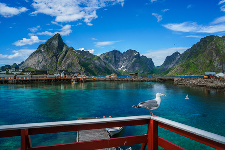 sheltered: Lofoten islands is an archipelago in the county of Nordland, Norway. Is known for a distinctive scenery with dramatic mountains and peaks, open sea and sheltered bays, beaches and untouched lands. Stock Photo