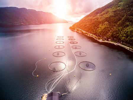 Pesca del salmón en Noruega granja aérea Foto de archivo - 64793821