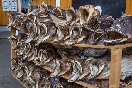 dryed: Fish shop Reine, Lofoten, Norway.