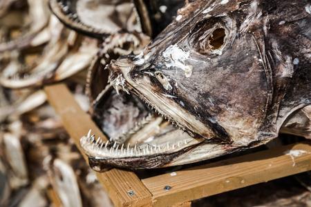 stockfish: Fish shop Reine, Lofoten, Norway.