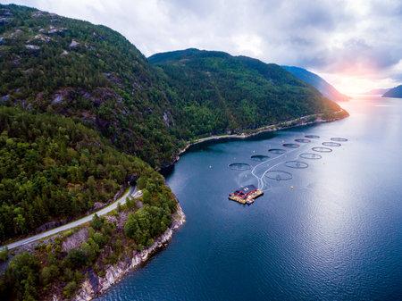 Farm salmon fishing in Norway aerial photography. Foto de archivo - 93729388