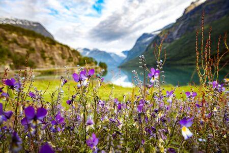 Beautiful Nature Norway natural landscape. 写真素材 - 128819935