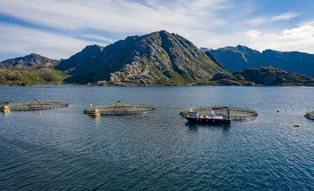 Farm salmon fishing in Norway. 写真素材 - 128820696