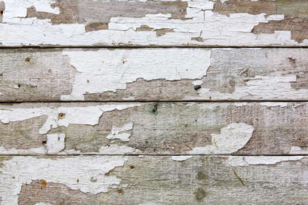 Fence boards, old, beaten, and battered. White paint that is chipping, flaking, and peeling off.