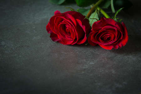 overlaying: Two red roses, overlaying each other, on slate coloured tile