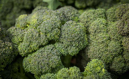 clustered: Local produce at a Farmers Market. Broccoli heads clustered together. Stock Photo
