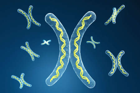 chromosome in digital background photo
