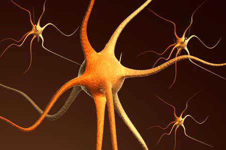 brain cells: Close-up render of neuron brain cells