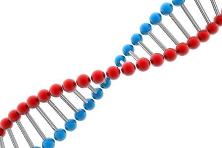 genes: ADN   Foto de archivo