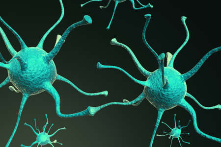 animal cell: Neuronas Foto de archivo
