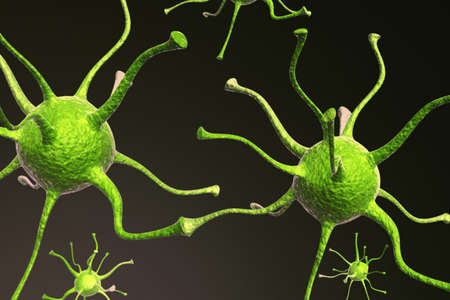 synapse: Neurons Stock Photo