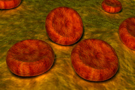 Blood cells Stock Photo - 10239890