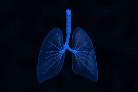 breathe: Human lungs