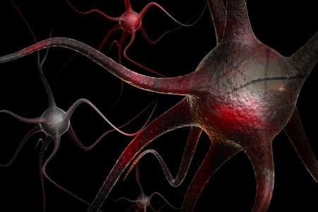 dendrites: Neurons Stock Photo