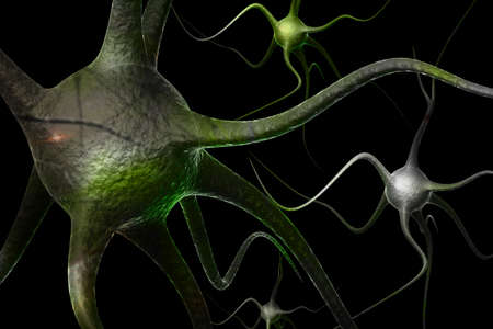 Neurons Stock Photo - 10629088