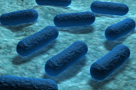 Bacteria e coli Foto de archivo - 10629099