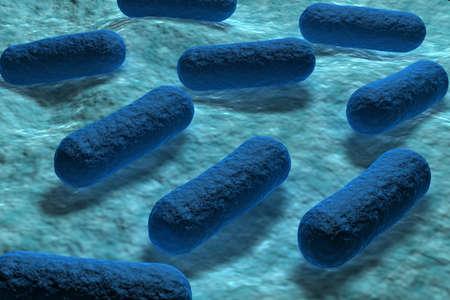 E coli Bacteria Stock Photo - 10629099