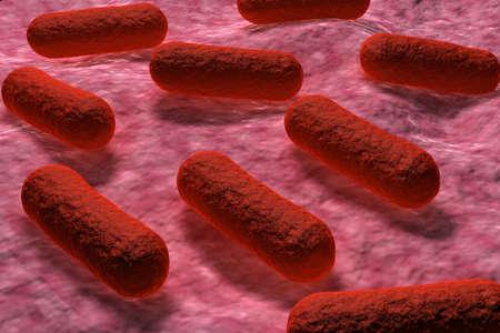 defocussed: E coli Bacteria