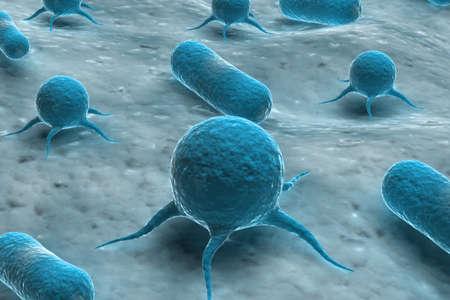 Virus and Bacteria photo