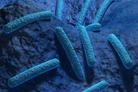 electrons: Bacteria