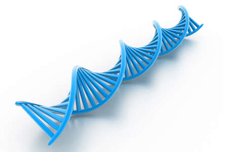 nucleic: Dna stands
