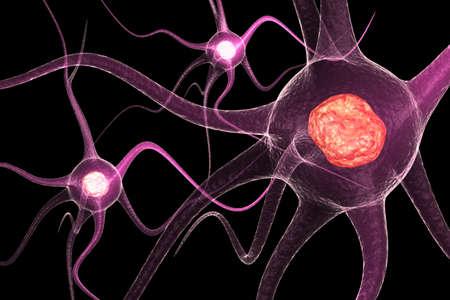 neuron cell body: Active Neurone