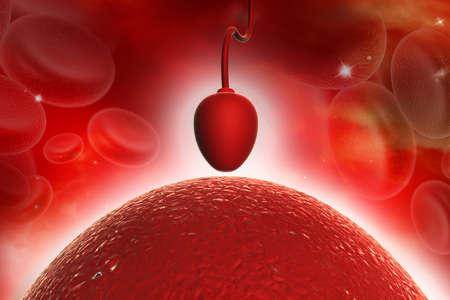 espermatozoides: Celda de espermatozoides tratando de llegar a un óvulo humano Foto de archivo