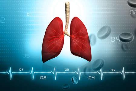 aparato respiratorio: Los pulmones humanos en el dise�o digital