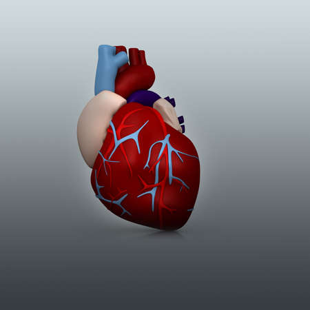 3d human heart in digital  background photo
