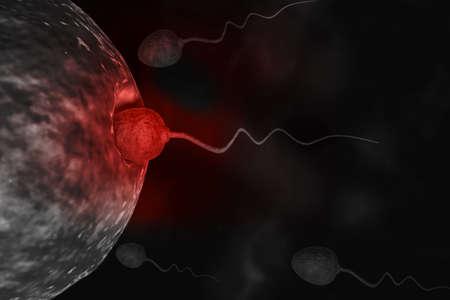 sex cell: Sperm cells trying to reach an human ovum.