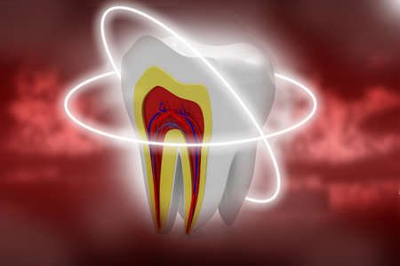 dental pulp: cross section of teeth in abstract background